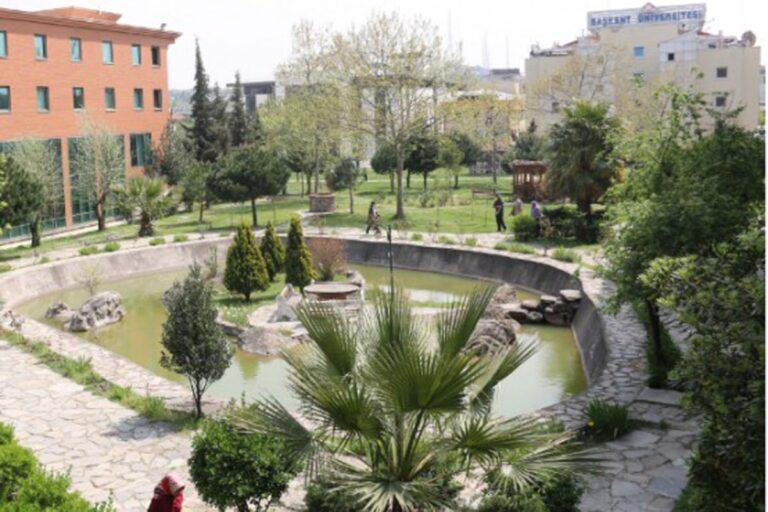 جامعة اسطنبول ٢٩ مايو