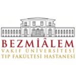 Bezmiâlem University